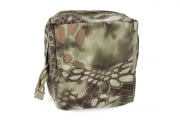 TMC Nylon Square MOLLE Canteen Pouch (MAD)