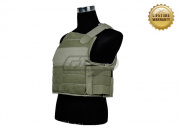 Pantac USA Body Armor Carrier (Ranger Green)